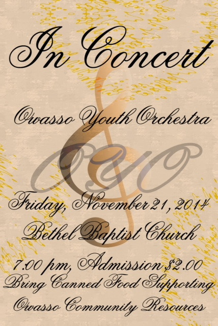 youth orchestra concert nov 2014