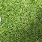 12th Annual Owasso Rams Golf Booster Club Tournament