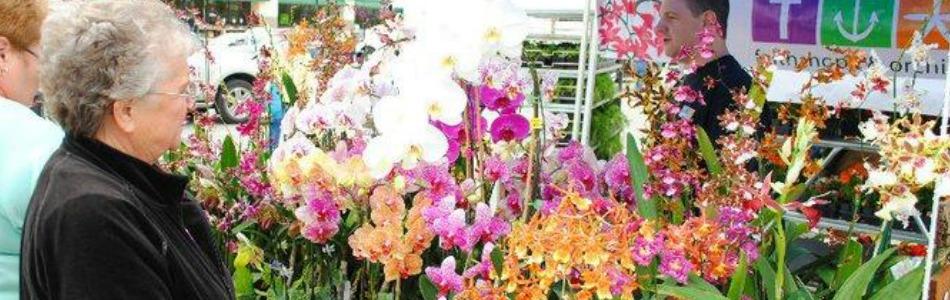 Owasso 12th annual spring garden festival may 7 for Acapulco golden tans salon owasso ok