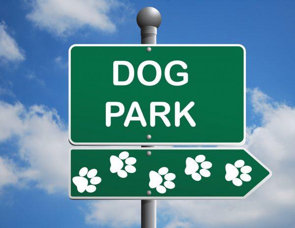 dog-park-1497655_1280