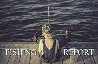 Fishing Report for October 30, 2020